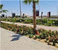 ممشى سياحي بطول 6 كيلومترات في الشيخ زايد