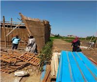 إزالات فورية لحالات تعد على الأراضي الزراعية في المنوفية