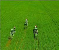 7 سنوات في عهد السيسي.. التوسع في إنشاء المزارع الأفريقية والانضمام إلى «اليوبوف»