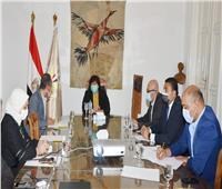 وزيرة الثقافة تتابع استعدادات إطلاق المنصة الرقمية لمعرض القاهرة الدولي للكتاب