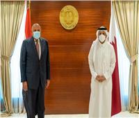 وزيرا الخارجية المصري والقطري يعربان عن ارتياحهما للتطور الإيجابي للعلاقات بين البلدين  صور