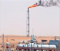 وزير البترول يبحث مع «إيمرسون» العالمية تطبيق التحول الرقمي بالمشروعات البترولية