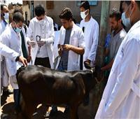 جامعة سوهاج تطلق قافلة بيطرية مجانية لقرية نجع العبله بمركز طهطا