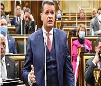 برلماني يهاجم وزير البترول: أرقام الوزارة تخلو من الشفافية وهناك انخفاضا بإنتاجية الزيت
