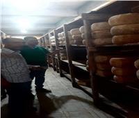 ضبط 4.550 طن «جبن تركي» غير صالح للاستهلاك الأدمي بأبو حمص