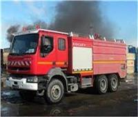 إخماد حريق بـ15 فدانًا بعد تفحم 200 نخلة في الوادي الجديد