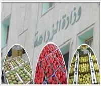 أسعار الخضروات في سوق العبور اليوم ١٦يونيو 2021