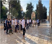 56 مستوطنًا يقتحمون باحات المسجد الأقصى
