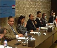 وزير المالية: نجحنا في تغطية 95٪ من الواردات المصرية بـ«نافذة»