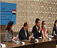 «هونج جين ووك» يشيد بمصر في تذليل الصعوبات التي تواجه الشركات الكورية