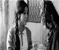 زيادة وزن الفنانة «زيزي مصطفى» يعرضها لدفع غرامة مالية ضخمة