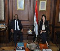 المشاط تؤكد حرص مصر على دعم مجلس الوحدة الاقتصادية فى القيام بمهامه