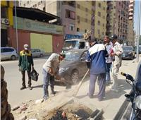 حملة لنظافة وتجميل الشوارع في الطالبية بالجيزة | صور