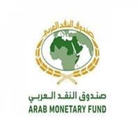 صندوق النقد العربي يطالب برقمنة «التحصيل الضريبي»