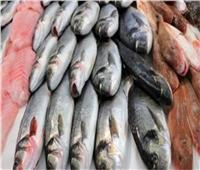 أسعار الأسماك بسوق العبور اليوم 18 يونيو