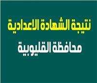 محافظة القليوبية: اعتماد نتيجة الشهادة الإعدادية منتصف الأسبوع المقبل