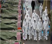 البرازيل تسجل أكثر من 74 ألف إصابة و2311 وفاة بفيروس كورونا