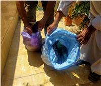 صور| استخراج أعمال سحر خلال حملة تطهير المقابر بـ«الدلجمون» في الغربية