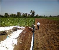 حملات لإزالة التعديات على الأراضي الزراعية وأملاك الدولة بمركزين بالمنيا