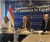 مصر ساعدت بايدن علي كسر جمود ملفات الشرق الأوسط