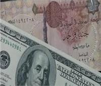 تراجع طفيف بسعر الدولار الأمريكي أمام الجنيه المصري بالأسبوع الثاني من يونيو