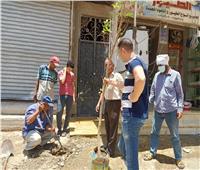 استمرار تنفيذ المبادرة الرئاسية «اتحضر للأخضر» في أسيوط