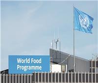 «فاو»: ارتفاع ضحايا المجاعات فى العالم إلى ٤١ مليون شخص