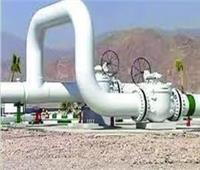 «مستثمري الغاز»: الموازنة الجديدة مؤشر على قوة قطاع البترول والطاقة في مصر