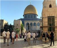 عشرات المستوطنين يقتحمون المسجد الأقصى.. وإسرائيل تعتقل 11 من عرب الداخل