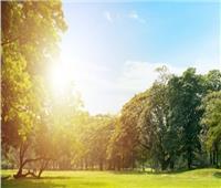 الأرصاد تكشف حالة الطقس في أول أيام فصل الصيف