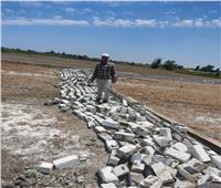 إزالة 5 حالات تعدٍ على الأراضي الزراعية في البحيرة | صور