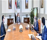 الرئيس السيسي يوجه بتطوير منظومة الصوامع ومخازن المواد التموينية