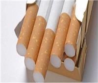 النيابة تأمر بالتحفظ على ١٤ ألف علبة سجائر مجهولة المصدر بالقاهرة