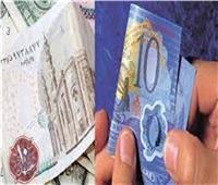 مصير العملات الورقية حال طرح البلاستيكية.. فيديو