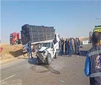 مصرع سائق وإصابة 3 أخرين في تصادم بين سيارتي نقل بالمنصورة
