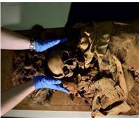 «عنخ خونسو».. مومياء مصرية تظهر للمرة الأولى في التاريخ بإيطاليا