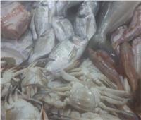 ضبط أسماك ولحوم غير صالحة للاستهلاك الآدمي في الإسكندرية