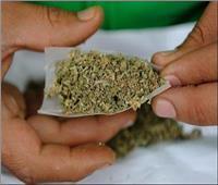 الحشيش والهيروين والترامادول .. تعرف على أكثر أنواع المخدرات إنتشارا