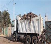 رفع 181 طن قمامة من حي ثان المحلة