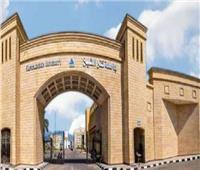 جامعة كفرالشيخ الرابع محلياً وضمن أفضل 183 جامعة في تصنيف التايمز البريطاني