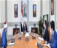 الرئيس السيسي يؤكد لوزير الأوقاف: ضرورة صون مال الوقف وتنميته وحسن إدارته