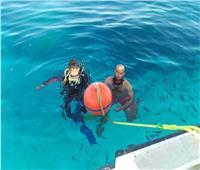 1200 شمندورة للحفاظ على الشعاب المرجانية في البحر الأحمر