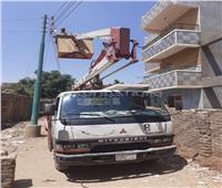 حملة لرفع كفاءة الإنارة والنظافة في منشأة القناطر بالجيزة| صور