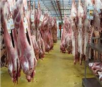 الزراعة: 30% تخفيضات على اللحوم بمناسبة عيد الأضحى