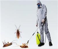 «ضحك على الزبون»  مراكز إبادة الحشرات في مرمى الاتهام