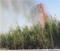 إخماد حريق شب في إحدى الأراضي الزراعية بأسوان