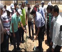 رئيس جامعة الوادي الجديد يطلق مبادرة لزراعة 25 فدانًا