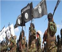 «بوكو حرام» تعلن مبايعتها لتنظيم «داعش»
