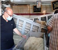 مدير تموين الاسكندرية يقود حملة على المخبز بغرب الاسكندرية