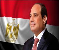 السيسي: مصر والصين تسعيان للارتقاء بالعلاقة الاستراتيجية الشاملة بينهما